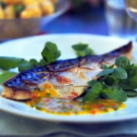 Phil Vickery�s grilled mackerel with mango and chilli dressing recipe