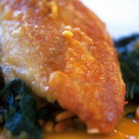 Sherry-cooked chicken on tapas spinach recipe