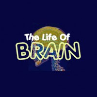 Life of brain game
