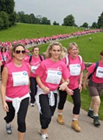 Pink Ribbonwalk plan