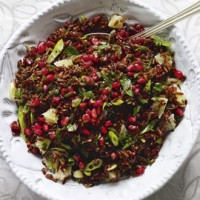 Red Rice Salad with Cranberries and Pomegranate