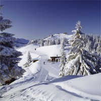 Travel: skiing in Austria