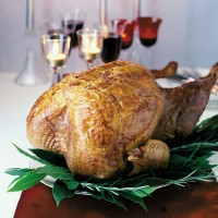 Christmas buttered roast turkey recipe