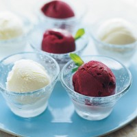 Blackcurrant, mint and cassis sorbet recipe