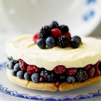 Summer Berry Tiramisu Cake