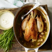Pot roast chicken with creamy tarragon sauce recipe