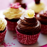Chocolate swirl cupcake recipe