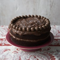 Chocolate Malteser Cake with Malted Chocolate Frosting