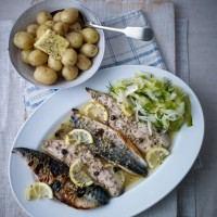 Fennel, juniper and honey mackerel with cucumber recipe