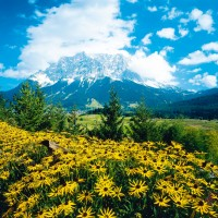 Travel: the Tyrol in Austria