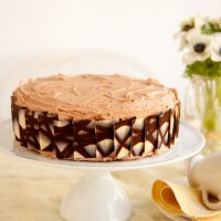 Chocolate fudge cake with salted milk chocolate buttercream recipe