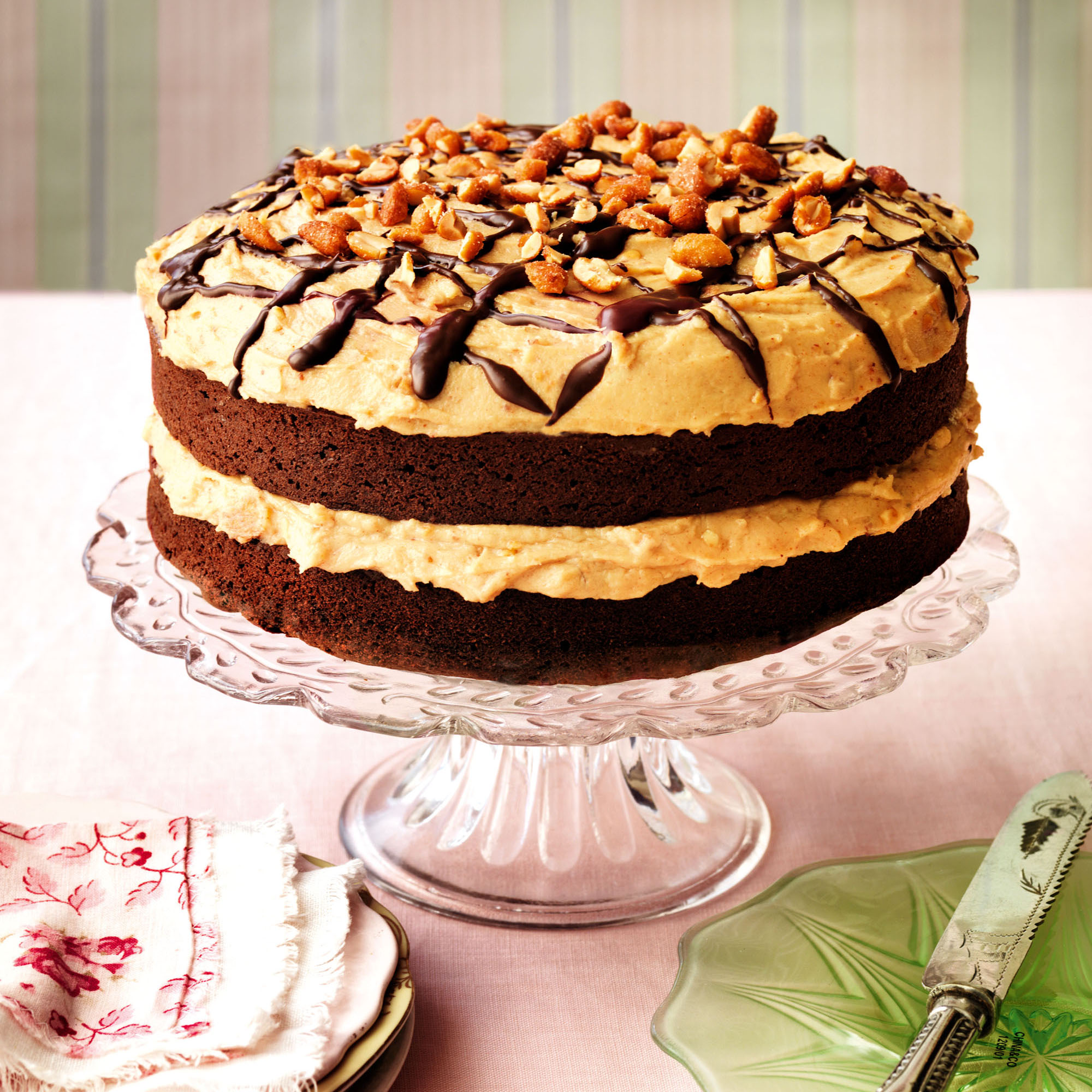 Chocolate Peanut Butter Ice Cream Cake Woman S Day