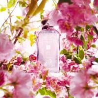 Jo Malone Limited Edition Plum Blossom Cologne