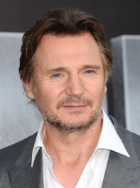 Liam Neeson interview