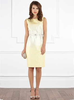 Coast Beverley Dress