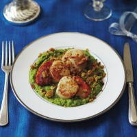 Scallops on pea pur�e with Parmesan crumbs