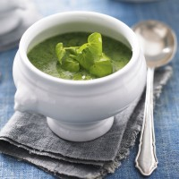 Luxury watercress soup