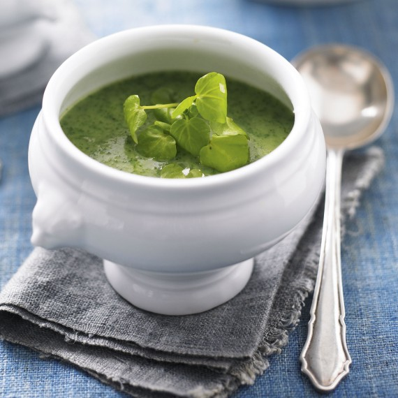 Luxury watercress soup-woman and home