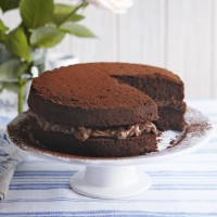 Chocolate and hazelnut Victoria sandwich