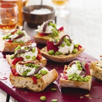 Mozzarella and Anchovy Bruschetta