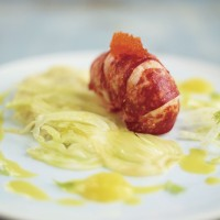 Lobster Tail and Fennel Puree