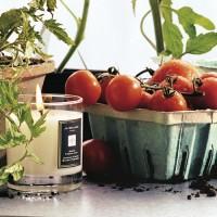 Jo Malone Green Tomato Leaf Candle