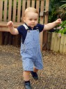 Prince George enjoys his first Royal walkabout