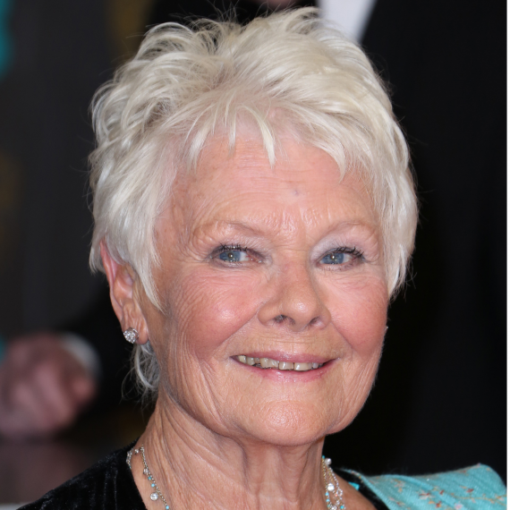 judi dench pixie haircut design to download judi dench pixie haircut ...