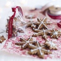 Iced and Spiced Biscuits