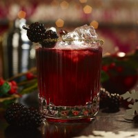 Frosted Berry Cocktail