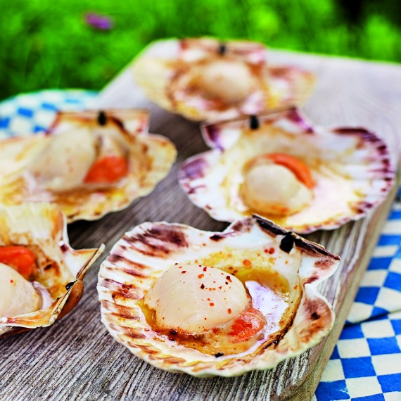 How To Cook Scallops on the Stovetop   Kitchn
