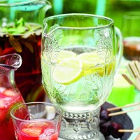 Fino and Tonic Recipe