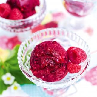 Instant Frozen Berry Sorbet