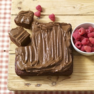 BRAND NEW Cake Recipes