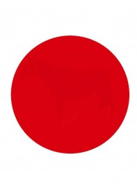 How Good Is YOUR Eyesight? Try The Red Dot Test