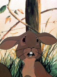 James McAvoy and Olivia Colman Star In Watership Down Remake