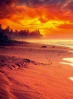 Explore Sunny Sri Lanka