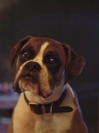 The New John Lewis Christmas Advert Is Finally Here...