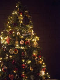 Sali Hughes 'Christmas In My Grandmother's Footsteps'