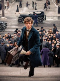 Everything We Know About The Fantastic Beasts Sequel So Far