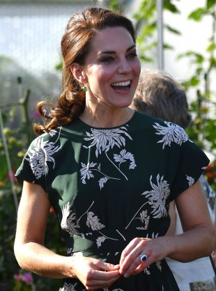 The Royals Are Out And About At The Chelsea Flower Show