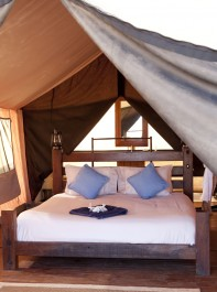 Pippa And James Go Camping On Their Honeymoon - With No Wifi Or Flushing Loos