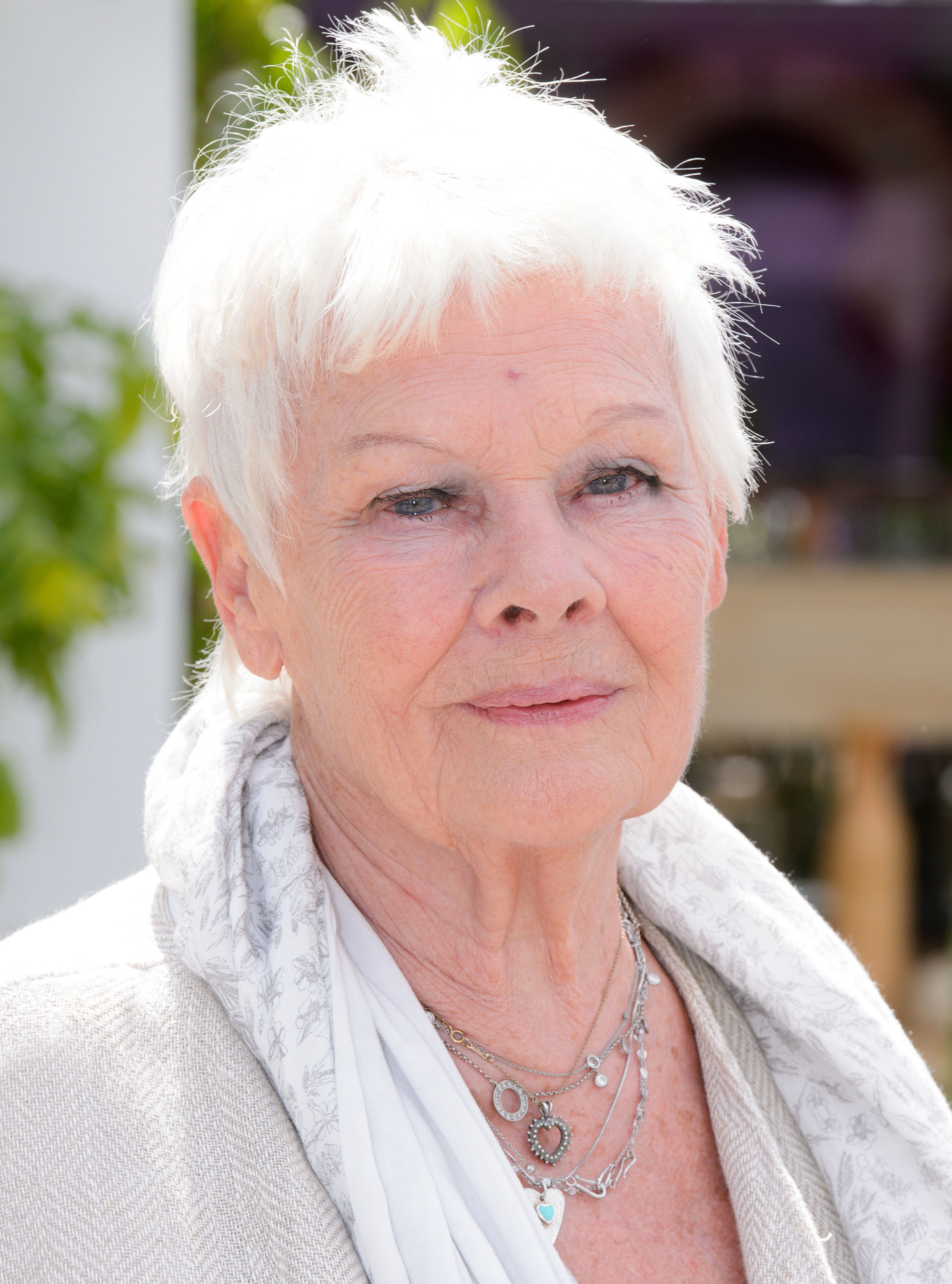 Judi Bench 28 Images Picture Of Judi Dench Judi Dench Images Pictures Photos Icons And
